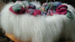Mohair Pelt and Roving