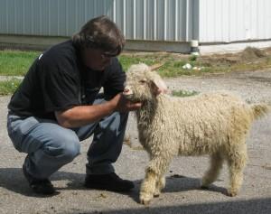 Senior white buck kid Pinxterbloom Farm